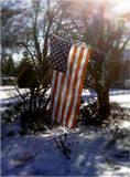 Winterflag